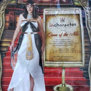 Other - Plus size 3x Queen of the Nile costume